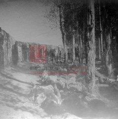 4/5 Après les massacres à Erzerum ; inhumation des victimes au cimetière arménien les 1er et 2 novembre 1895 (archives du ministère des Affaires étrangères)